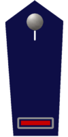 Brandmeister/-in